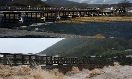 台風18号は過ぎ去り、京都の街を遠く感じた日