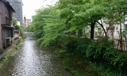雨降りの京都にて