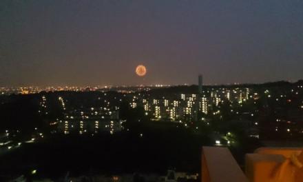 地震速報の後、ベランダから見えた花火に夏を感じた日
