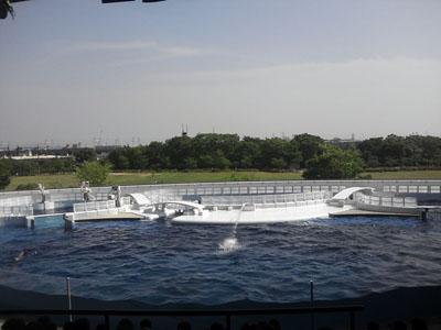 京都水族館、梅小路蒸気機関車館に行って来ました