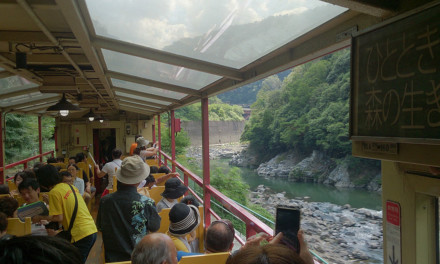 真夏日、トロッコに乗って嵐山へ