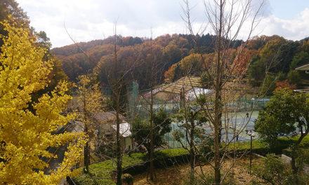 忍頂寺スポーツ公園にて