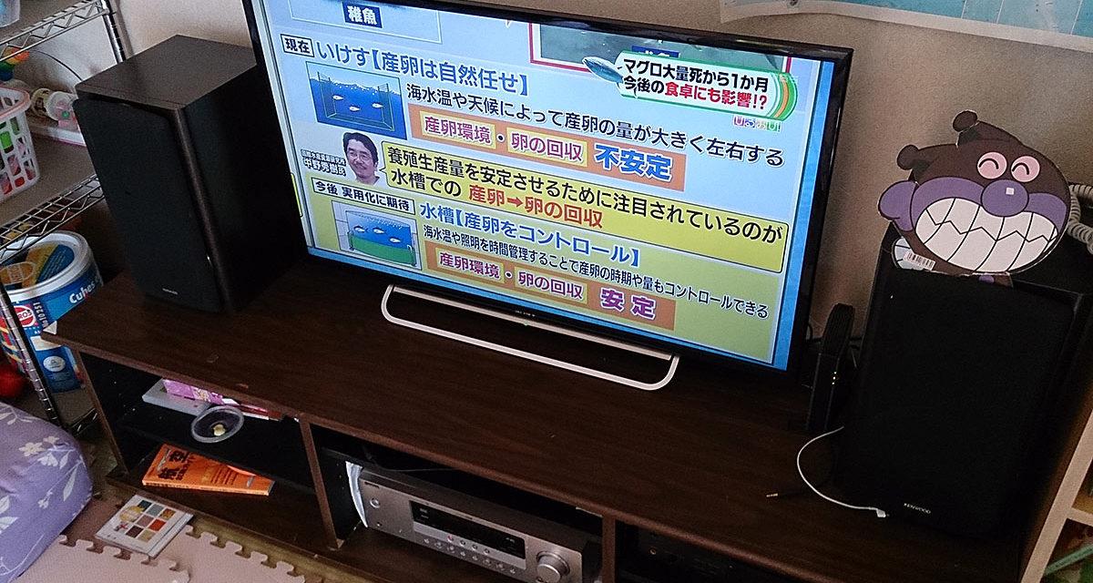 液晶テレビがやってきた!