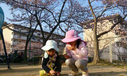 春・桜・新年度、そして少しだけの環境変化