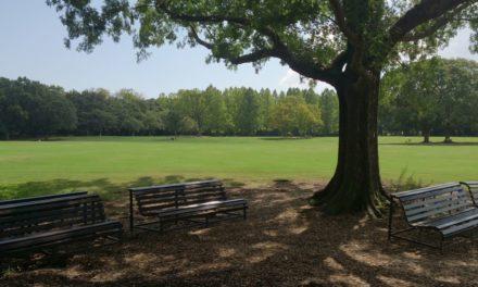 2015初秋の万博記念公園を歩く