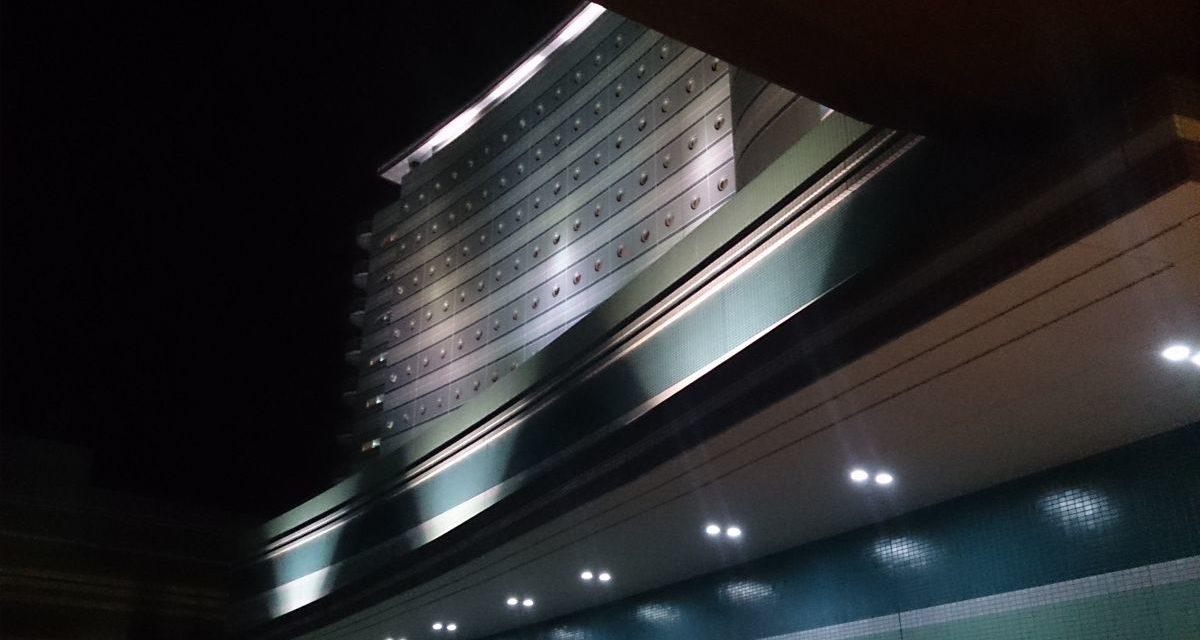 完全に蘇ったデヴィルちゃん ― 琵琶湖ホテルでの演奏