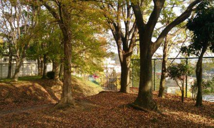 秋の風景 ― 子守ミッション発生
