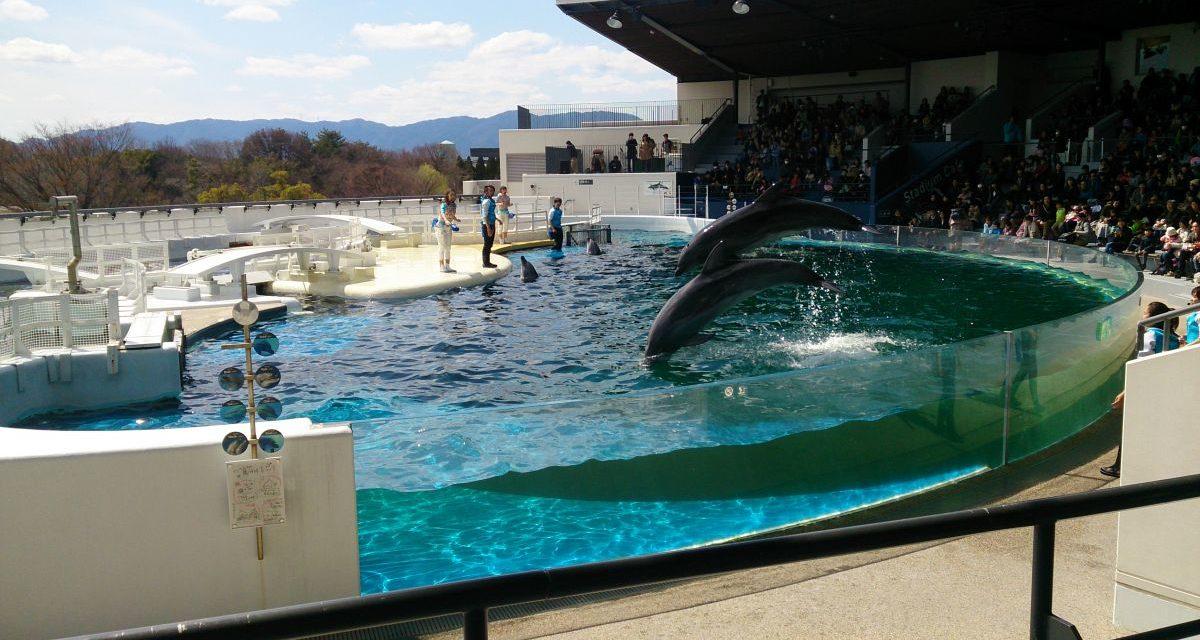 予定変更ラッシュ ― 京都水族館と梅小路公園