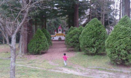 春、桜、そしてお城 ― 亀岡運動公園