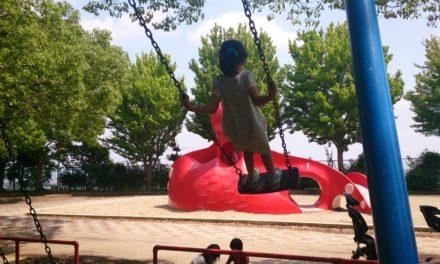成長 ― ブランコの立ち漕ぎを見て