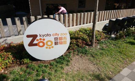 岡崎 ― 初めての京都市動物園