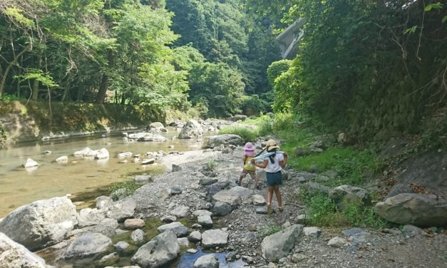 夏、川面に跳ねる石 ― Skipping Stone