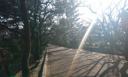 夙川の街を初めて歩く