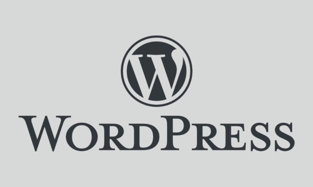 WordPress:サイト設定が英語環境の場合に抜粋が全文出力される