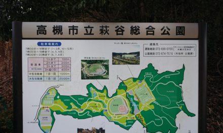 高熱 ― インフル疑惑の中、4年ぶりに長男と出向く公園