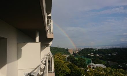 風景 ― 嵐の後に虹が出て、そして僕等は手巻き寿司を食らう