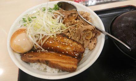 姫路 ― ひさびさのエレキギターでのステージと豚角煮丼