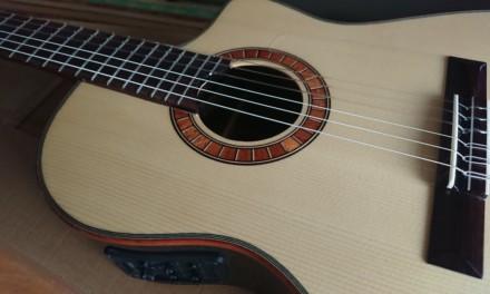 エレガットギター、Martinez MP-14 Roseを購入しました