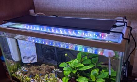自動 ― アクアリウム用LEDライトをHygger社の物に変更しました