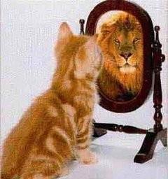現実を直視するという事は、自分の実力と向き合う事である