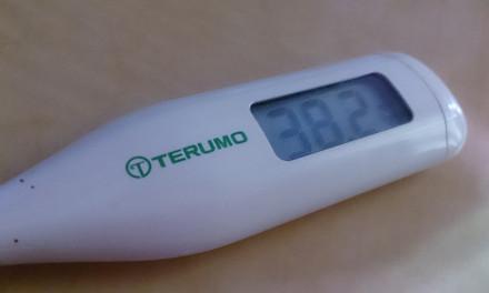 そしてやはり風邪 – インフルエンザ検査を初めて経験した日。