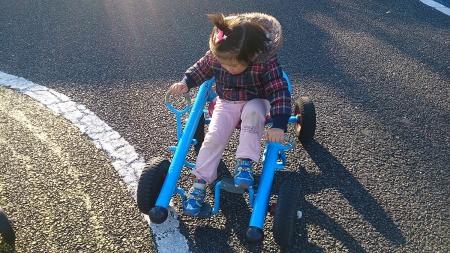 4輪タイプの自転車。方向は両手のレバーで操作する。