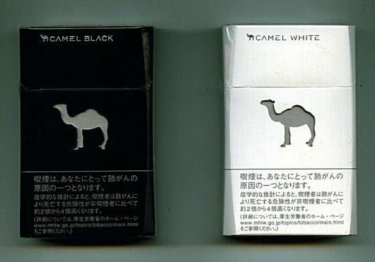 camel2013